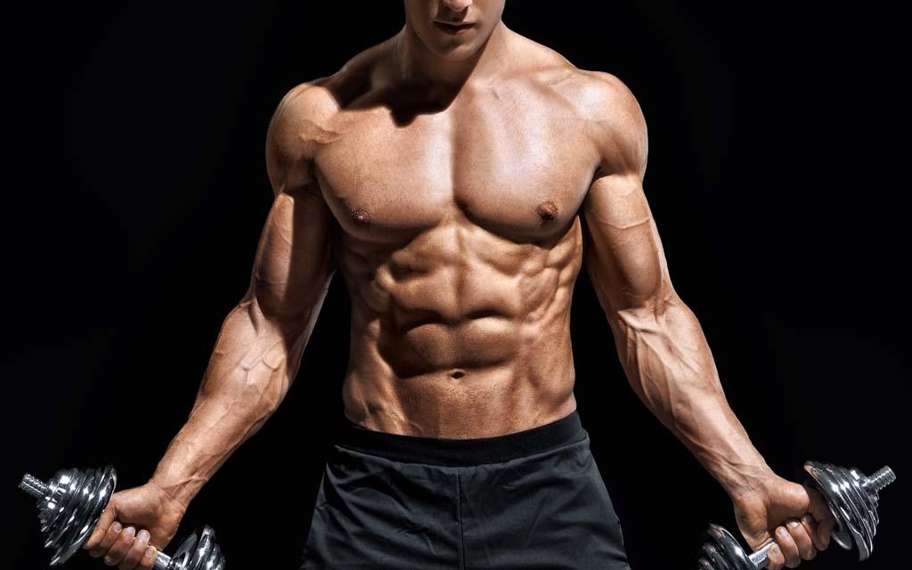 hvor mange muskler er der i kroppen