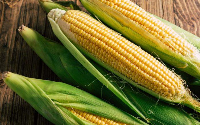 Er mais en grønnsak