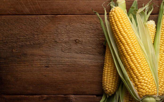 Mais næringsinnhold