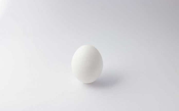 Proteiner i et egg