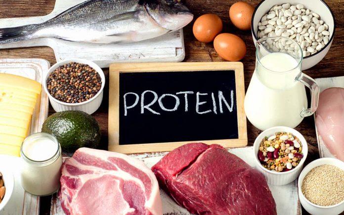 Hvor mye protein kan kroppen ta opp