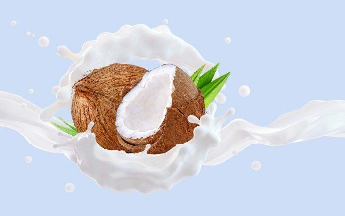 Kokosmelk næringsinnhold