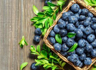 Vitaminer i blåbær