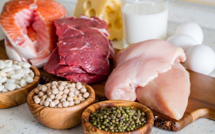 Hva bruker kroppen proteiner til