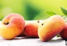 Nektarin næringsinnhold