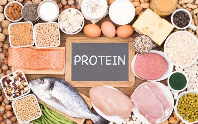 Protein etter trening