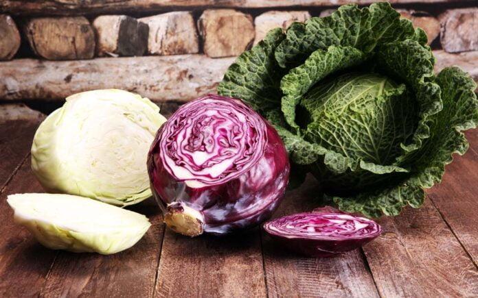 Næringsinnhold grønnkål