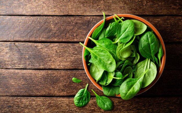 Spinat næringsinnhold